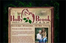 Hollybrook Appaloosas